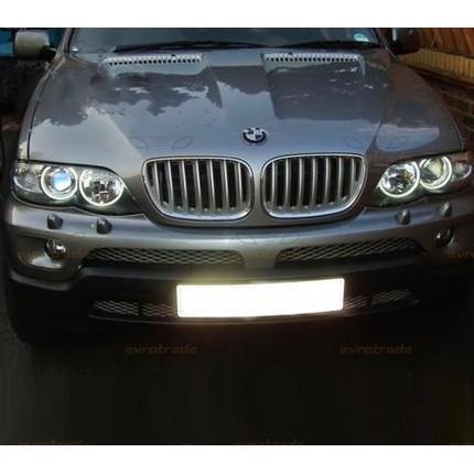 Ангельские глазки CCFL SVS BMW E53 (Х5)